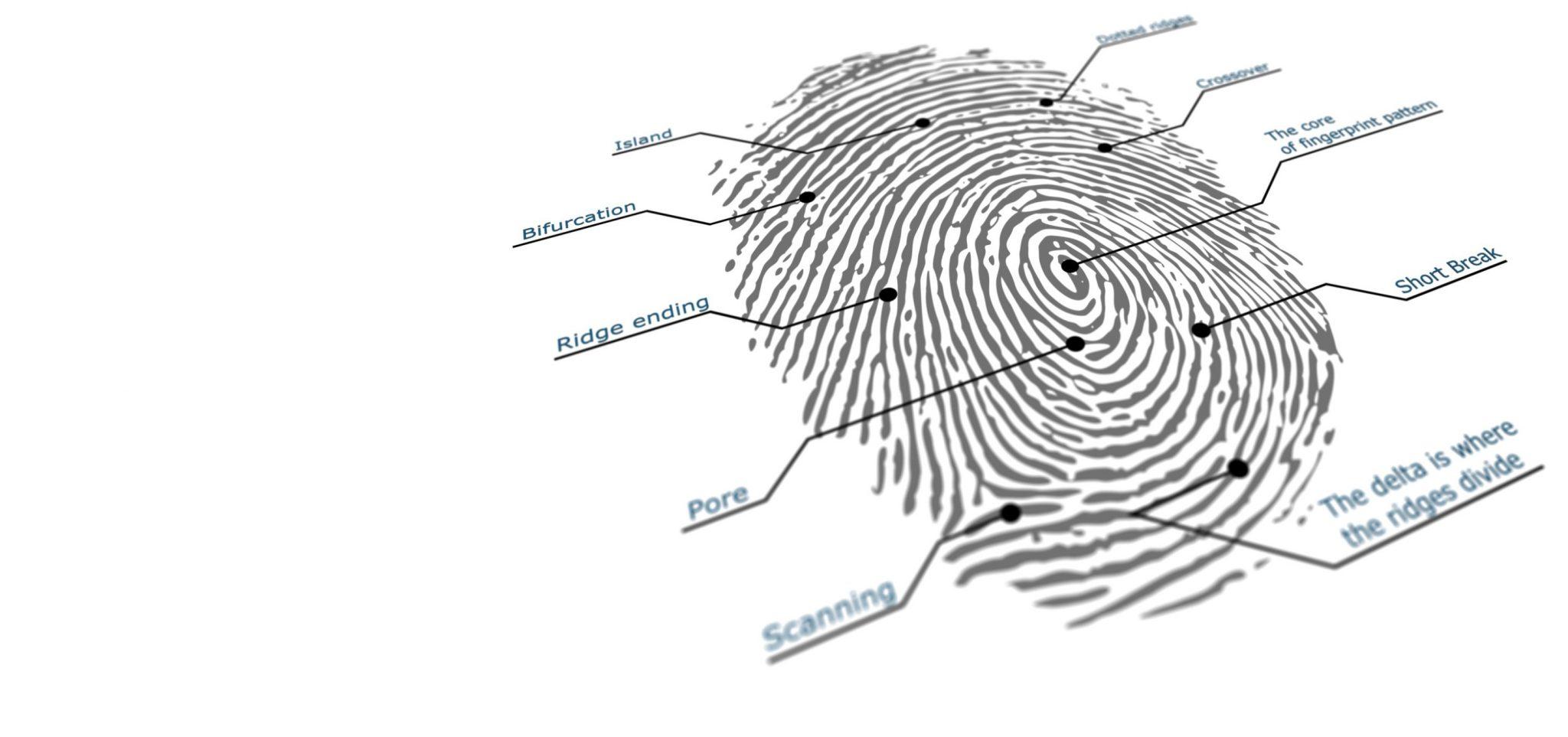 fingerprint_two_getty