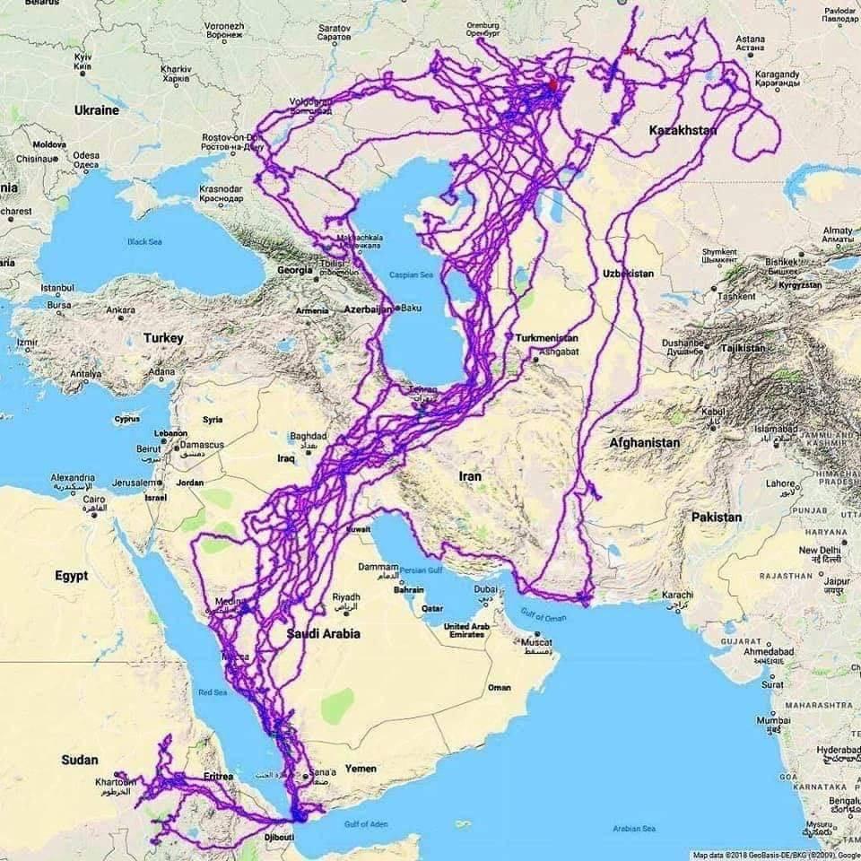 مسیر حرکت یک عقاب با GPS