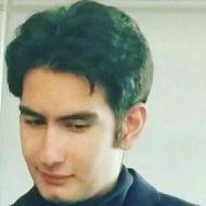 Mohammad Javad Moghaddasi